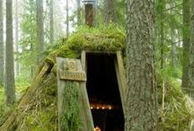Eco/organic home ideas