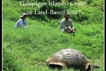 Galápagos Island Hopping Adventure / Revel in nature as you hop from island to island experiencing close encounters with animals – some found only in the Galápagos Islands.