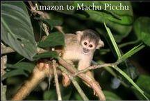 Amazon to Machu Picchu