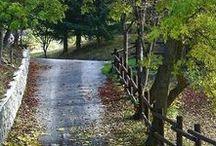 Country Rain