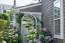 Cottage on Nantucket
