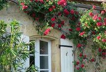 Rose Arbor Cottage