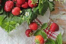 Strawberry Fields Farm