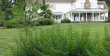 Grassy Ridge Farm