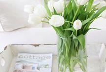 White Tulip Cottage