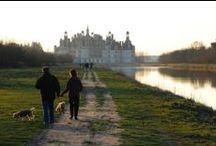 Chambord chateau Loire