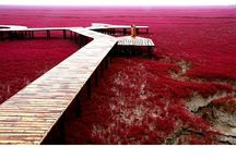 • Red Travel • / Travel inspiration by all things red
