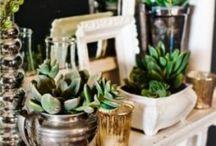 Gardening Cheats & Ideas