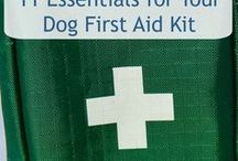 Dog Health / Tips on how to care for your dog's health and wellbeing