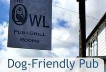 Reviews   Walk ~ Dog Friendly Places / Reviews on dog friendly walks