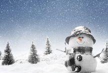 ✿ Winter Wonderful ✿ / The beauty of the season.