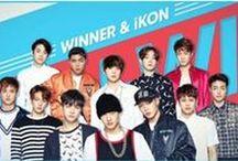 iKon & Winner