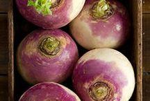 Veggie of the Day: TURNIP!