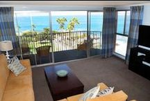 Suite Life  / by La Jolla Cove Suites