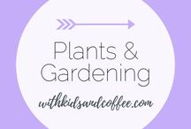 Plants and Gardening / Outdoor living inspiration that is focused on plants and gardening, as well as ideas for indoor gardens and kitchen herb gardens.