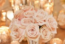 #BLUSH / For all things with a hint of blush