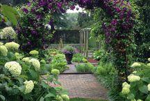 In the garden / Inspiraatioita puutarhaan.