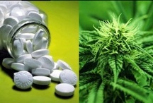 Legalize Marijuana!