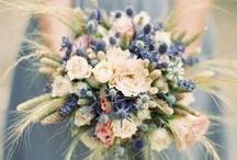 Flowers / by Miriam Parkman