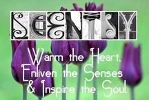 All things SCENTSY! / www.ahoupy.scentsy.us / by Amanda Houpy