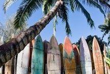 surf & D E S I G N