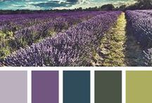 Color Inspiration / Who doesn't love color? This board is created for color inspiration for makeup, art, life.