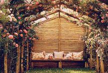The magic garden..