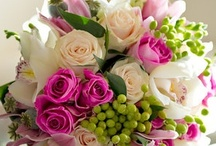 Flowers / by Barbara Freeling