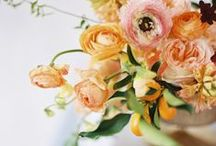 Orange & Peach Wedding / orange and peach weddings
