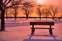Winter / by Mary Ellen Punch Barth