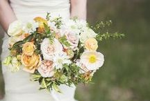 Best Bouquets  / Gorgeous bridal bouquets.  / by Sara | Burnett's Boards