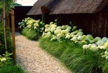 Garden Ideas / by Pete Grover