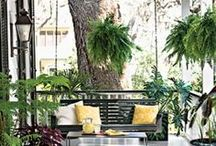 Outdoor Living! / We spend so much time outdoors in South Carolina and have such a long Summer, we do live outdoors.