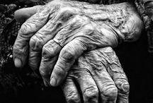 Hands and feet / anatomy
