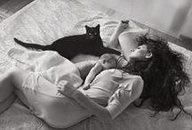 Cats / by Vaida B.