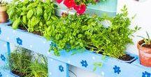 DIY-Balkon / DIY-Ideen für Garten und Balkon