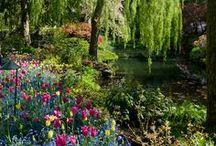 #Travel & Nature