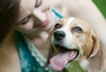 For the Love of Dogs / Celebrating man's best friend for their cuteness, companionship, loyalty and personality.