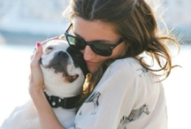 Unconditional Love / As pet parents, our love for our pets is unconditional. Pin photos of you and your pet showing your unconditional love for each other, use #bynaturepets and we'll repost!