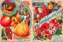 mini gardening printies / by James T
