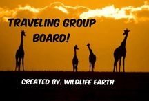 Traveling Group Board / Travel the world, Wildlife Earth hopes to inspire 1,000's into exploring the world! #WildlifeEarth