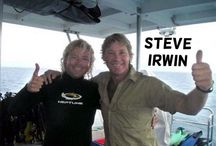 Steve Irwin / This board is dedicated to Steve Irwin, he was the one who inspired millions... His passion for wildlife was bigger than anything!  (1962-2006)
