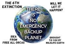 The 6th Extinction! / There has been five mass extinctions  on Earth... Will there be a sixth due to humans? This group  board was created by the idea of Free All Orcas. (Follow her!) / by Wildlife Earth