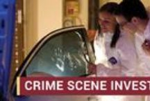 Crime Scene Investigation / Florida State University Panama City is accepting applications for the Bachelor of Science program in Crime Scene Investigation. The program begins fall 2015.