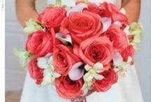 Weddings! / by Quinn Anastas