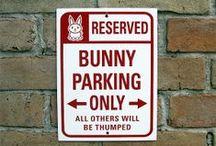 Teh BunZ / Nyuszkó / You can live without a bunny, but there is no point in living without a bunny. / Mert nyúl nélkül lehet élni, csak kérdés, hogy érdemes-e.