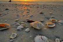 Sun sea sand ❤️
