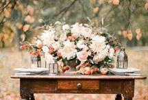 Fall Weddings / Weddings in the Autumn