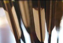 Seikoku Kyudo Kai / Il Kyudo, nel rispetto dell'antica tradizione giapponese, si pratica secondo un preciso rituale che prevede una sequenza di movimenti, Kata, apparentemente cerimoniali, in realtà funzionali a raggiungere la coordinazione necessaria al corretto scocco della freccia verso il bersaglio.