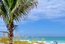 Terrific Tampa Bay / Incredible places to love about Tampa Bay.